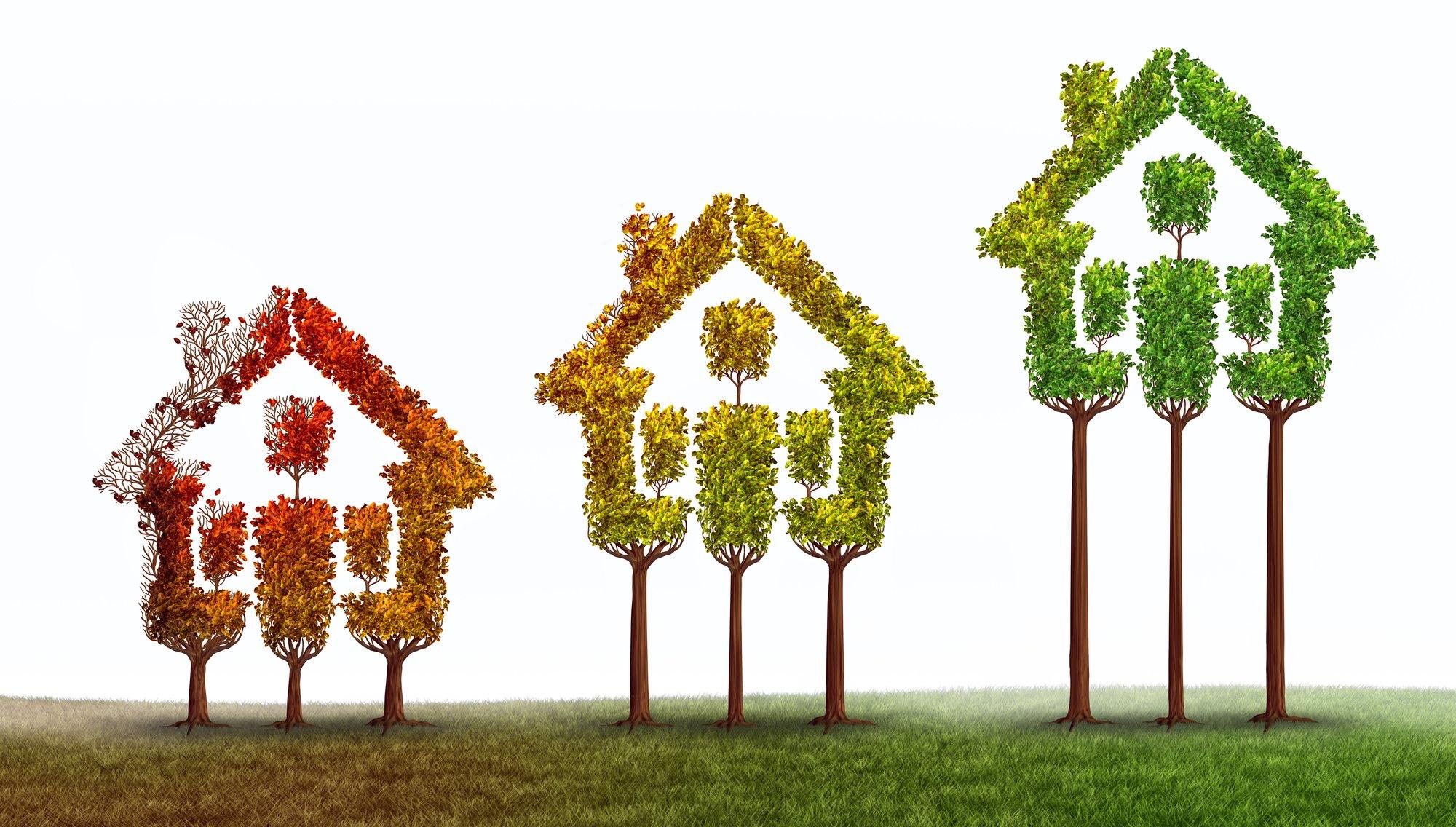 Real Estate Rise
